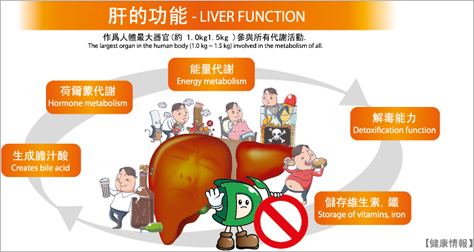 Liver Functions 향상 이미지